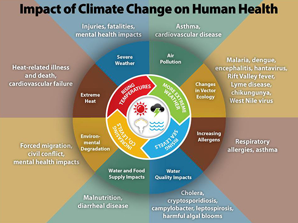 climate_change_health_impacts600w