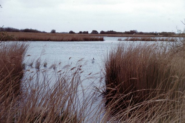 hickling_broad_-_geograph-org-uk_-_290689