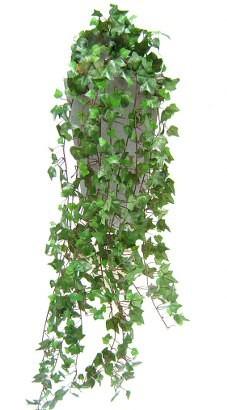 artificial-english-ivy-plant.jpg