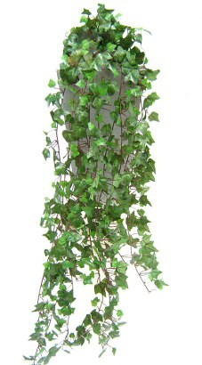 artificial-english-ivy-plant.jpg